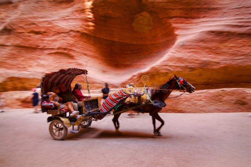 Pferd und Warenkorb, die durch das Siq beschleunigen lizenzfreies stockbild