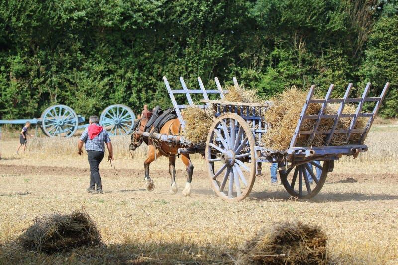 Pferd und Warenkorb mit Stroh lizenzfreies stockbild