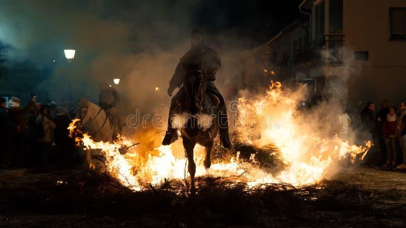 Pferd, welches das Feuer mit seinem Reiter kreuzt stockfotografie