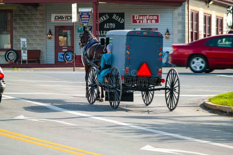Pferd zieht amischen Buggy in Lancaster County lizenzfreie stockbilder