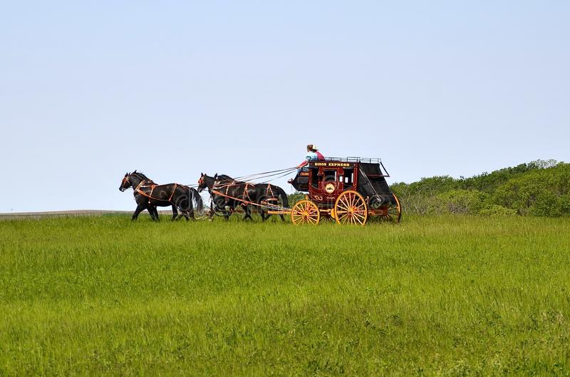Pferde, die einen Stagecoach ziehen lizenzfreie stockfotografie