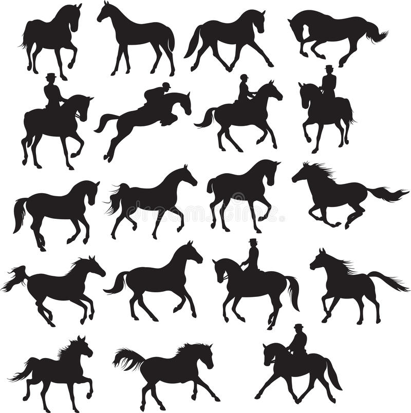 Pferde eingestellt stock abbildung