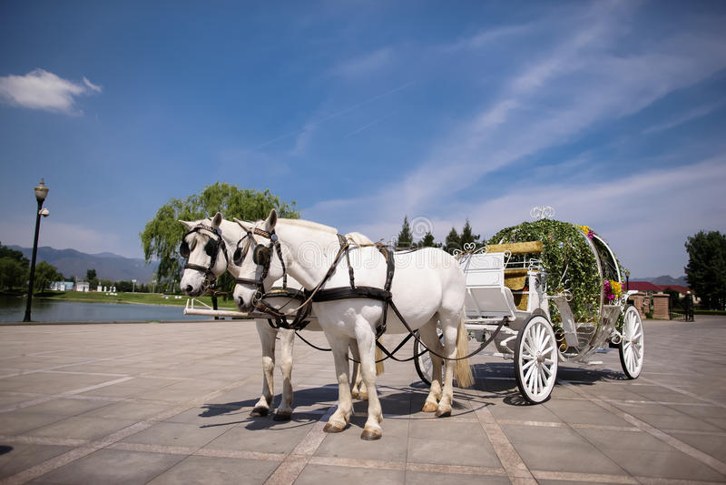 Pferdekutsche stockbilder