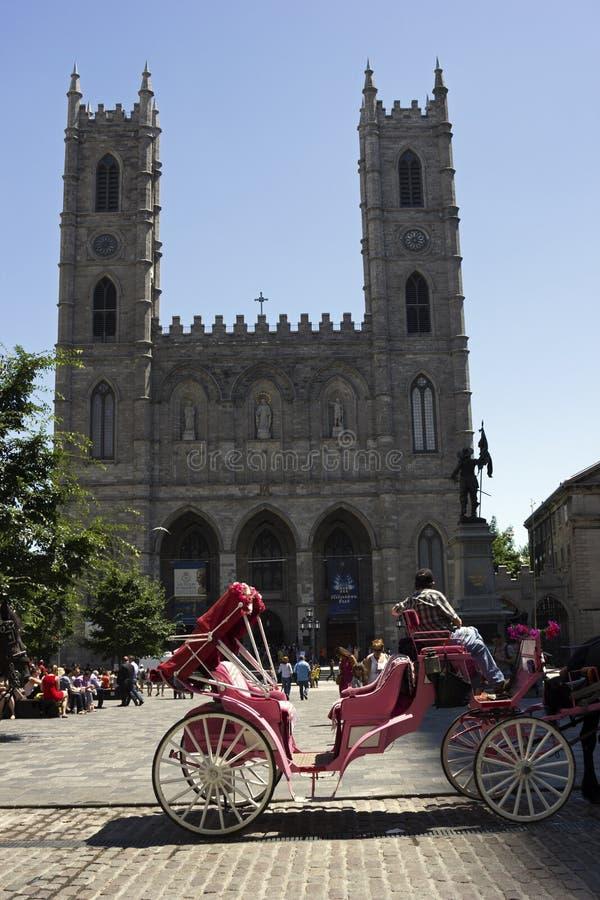 Pferdekutsche vor Notre-Dame-Basilika in Montreal stockbilder