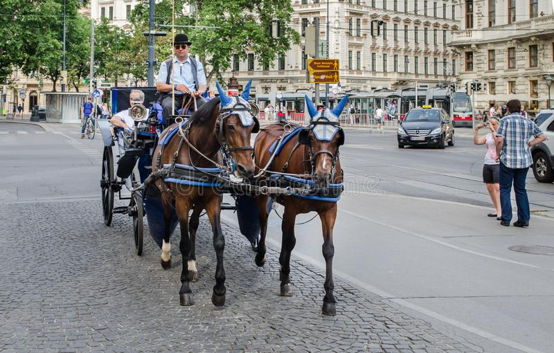 Pferdekutsche Wiens im Stadtzentrum lizenzfreie stockfotografie