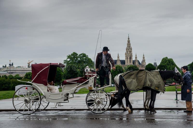 Pferdekutsche Wiens im Stadtzentrum stockfotografie