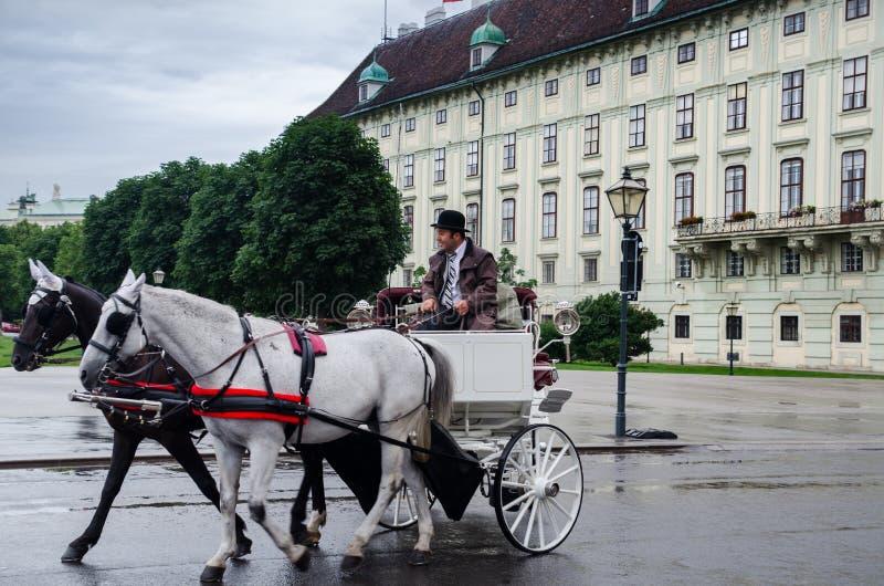 Pferdekutsche Wiens im Stadtzentrum lizenzfreies stockfoto