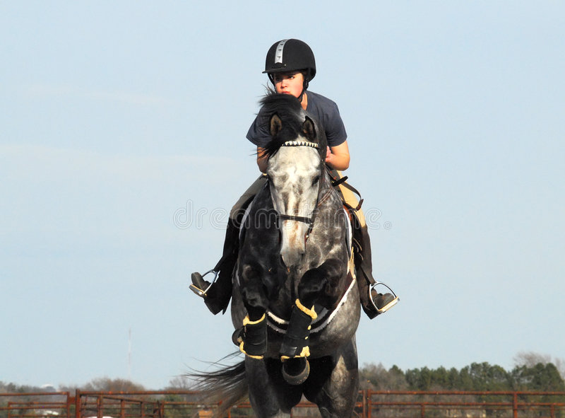 Pferden-Reiten lizenzfreie stockbilder