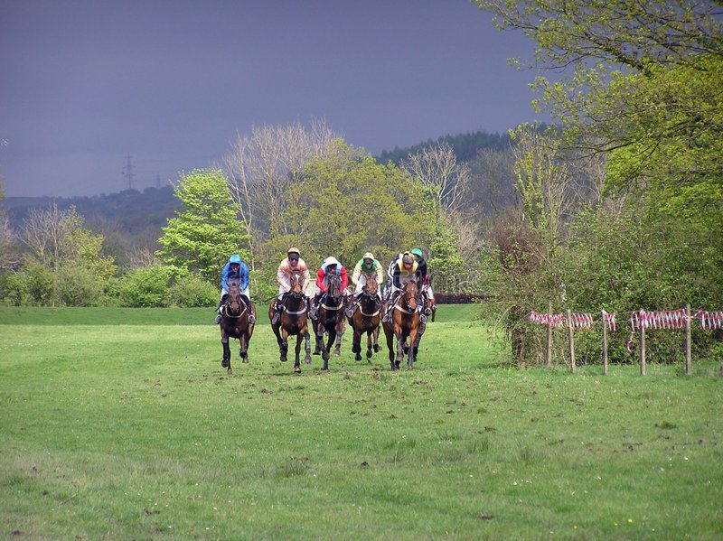 Pferden-Rennen stockfoto