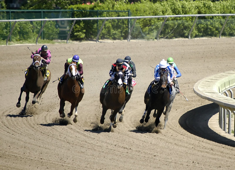 Pferden-Rennen Stockbilder