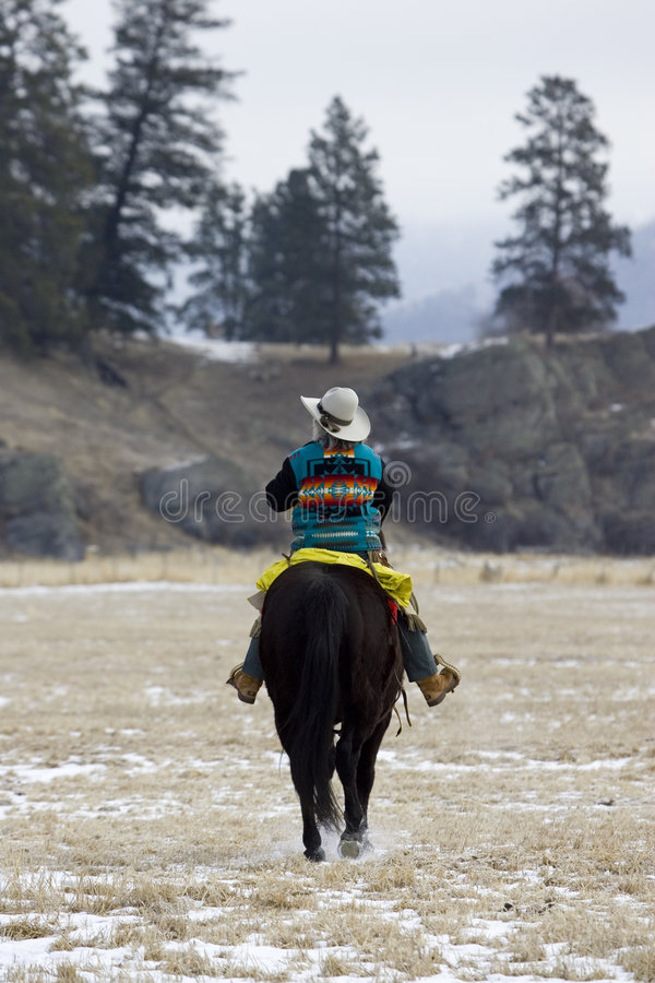 Pferden-Zusammenfassung lizenzfreies stockfoto