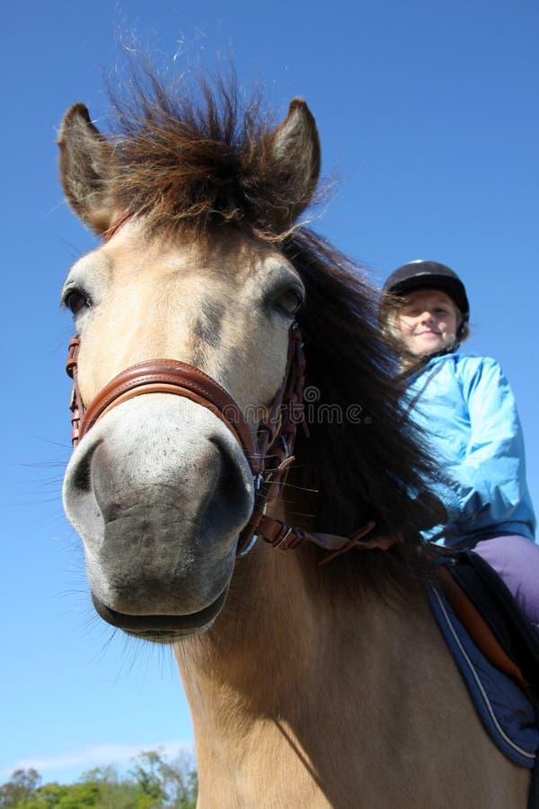 Pferdenreiten 1 lizenzfreies stockbild