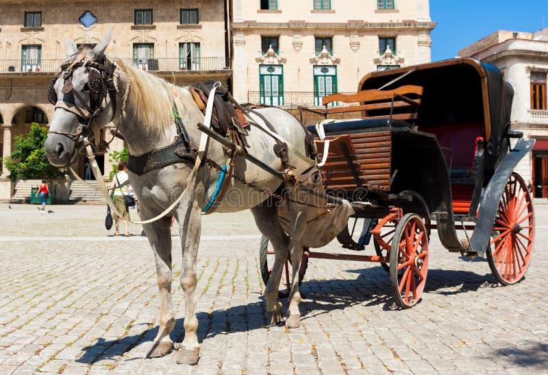 Pferdenwagen in altem Havana stockbilder