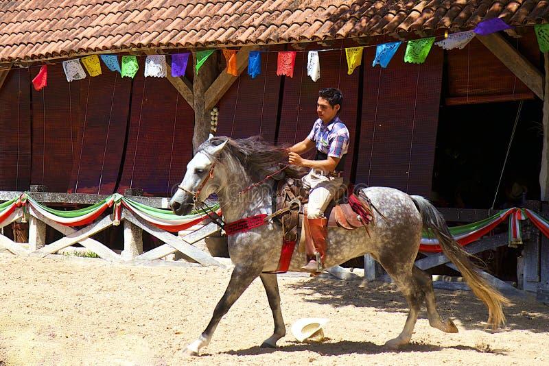 Pferdereiter in Mexiko, X-Winkelzeichen stockbild