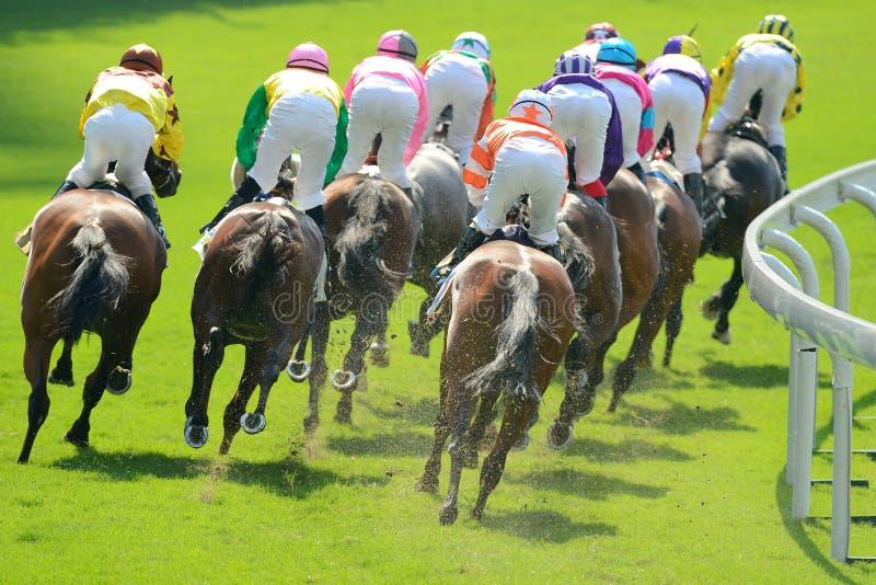 Pferderennen stockbild