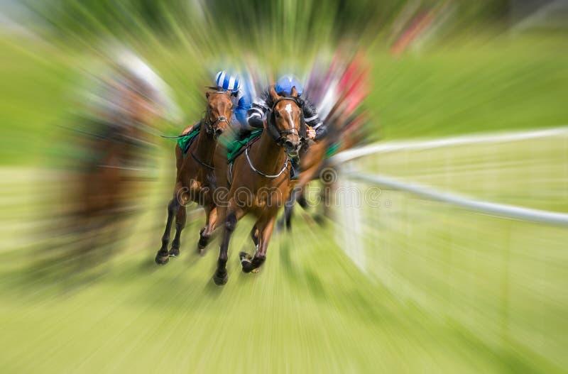 Pferderennenbewegungsunschärfe stockfoto