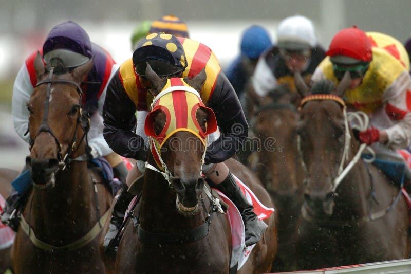 Pferderennengewinnen lizenzfreies stockfoto