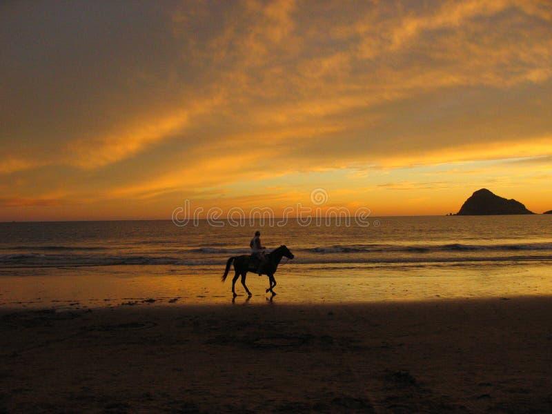 Pferderuecken-Reiten in Mazatlan S lizenzfreies stockfoto