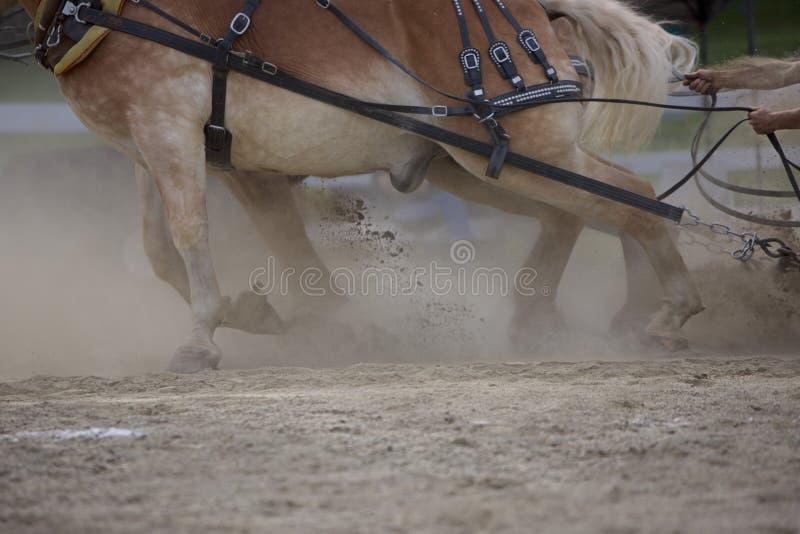 Pferdestärke unbegrenzt lizenzfreies stockbild