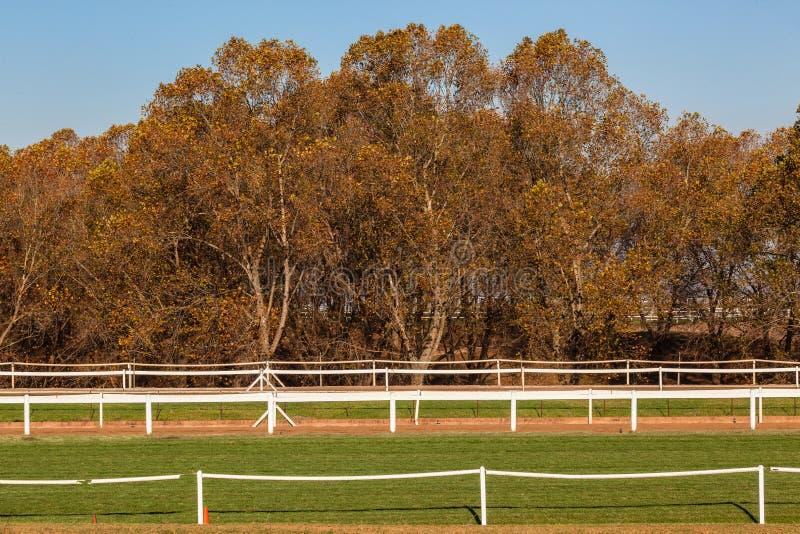 Einzäunen pferdetrainings bahnen die bäume einzäunen stockbild bild