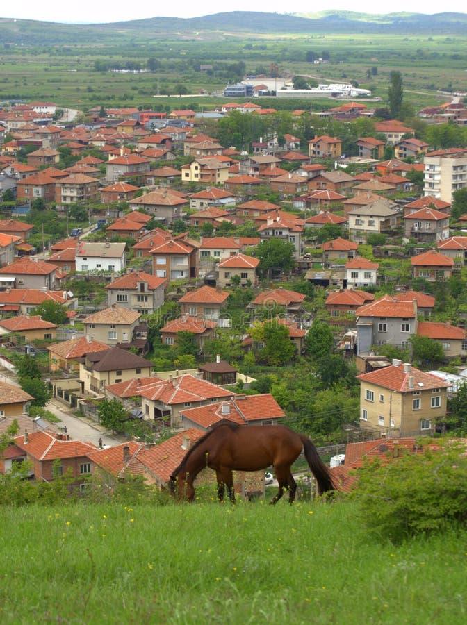 Pferdeweide Balkan-Dorfhintergrund stockbilder