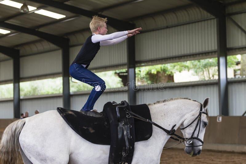 Pferdvaulting-Schwerpunkt-Reiter lizenzfreies stockfoto