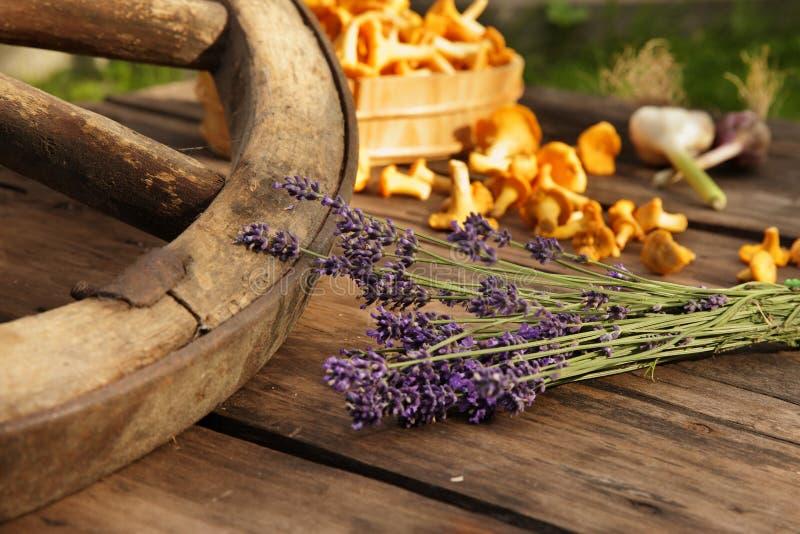 Pfifferlinge und Lavendel mit Wagenrad stockfoto