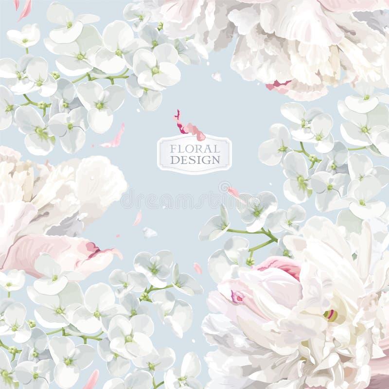Pfingstrosen- und Apple-Blütenblumenvektorhintergrund lizenzfreie abbildung