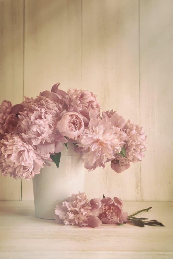 Pfingstrosenblumen mit Weinlesefarben lizenzfreies stockbild