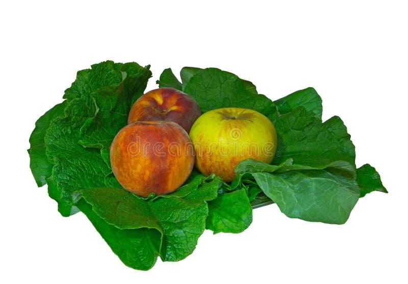 Pfirsich und Apfel auf grünen Blättern stockbild