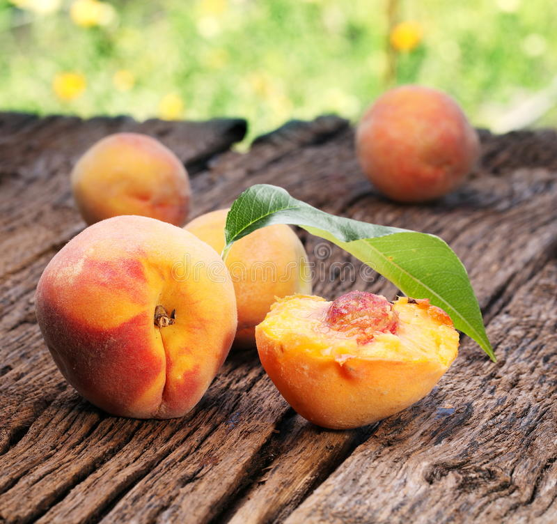 Pfirsiche mit Blättern lizenzfreies stockbild