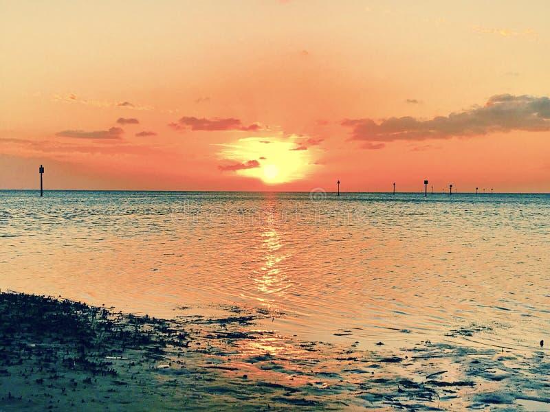 Pfirsichfarbener Sonnenuntergang stockbilder