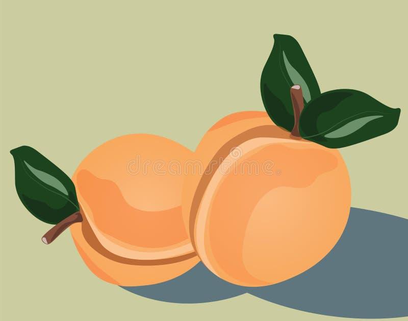Pfirsichfruchthintergrund vektor abbildung