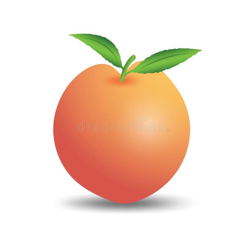 Pfirsichfruchtvektor, Netzikone, Zeichen, Gestaltungselemente für Geschäft vektor abbildung