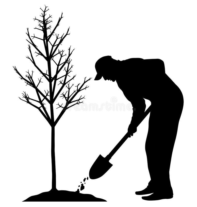 Pflanzen eines Baums lizenzfreie abbildung