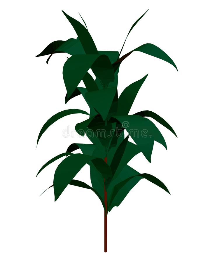 Pflanzen mit vielen grünen Blättern, die auf weißem Grund isoliert sind 3D Vector-Illustration lizenzfreie abbildung