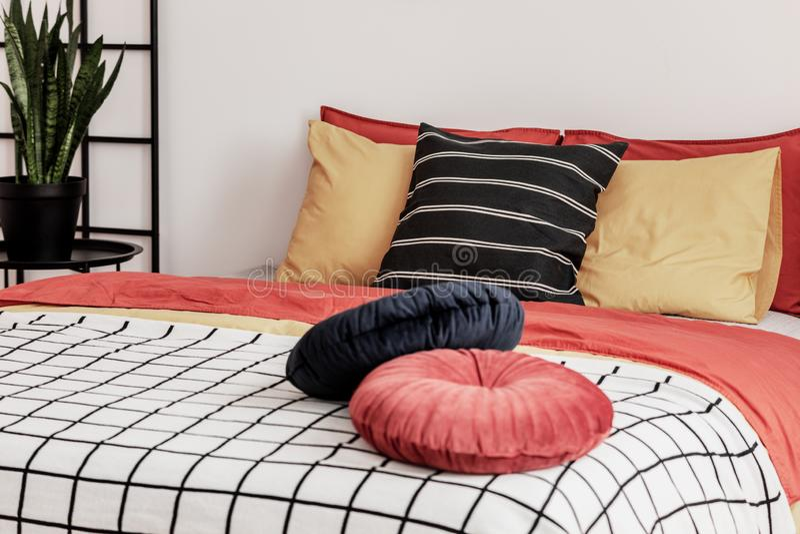 Pflanzen in schwarzem Topf neben dem King-Size-Bett in trendigem Schlafzimmer Innenbereich lizenzfreies stockfoto
