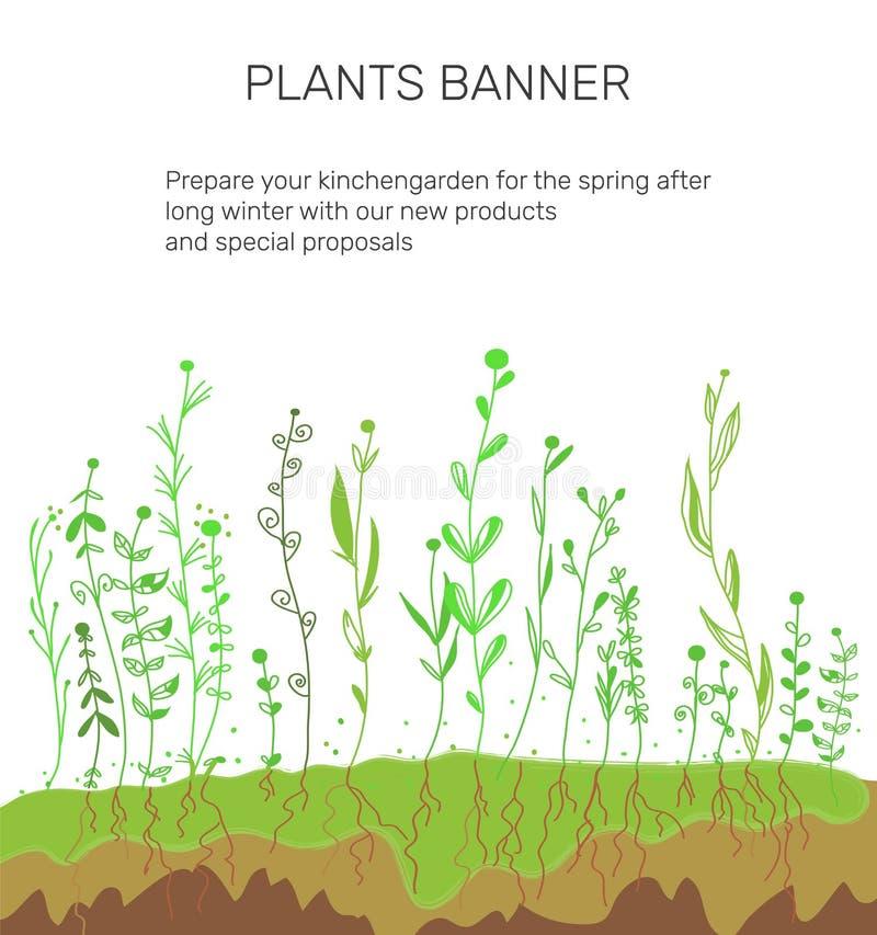 Pflanzen und Boden für Agrarbanner Vector-Illustration lizenzfreie abbildung
