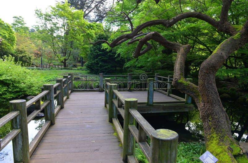 Pflasterung im japanischen Garten lizenzfreie stockfotografie