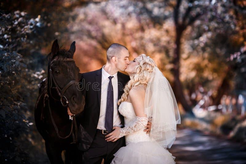 Pflegen Sie sich und die Braut während des Wegs in ihrem Hochzeitstag gegen eine Rappe stockbild