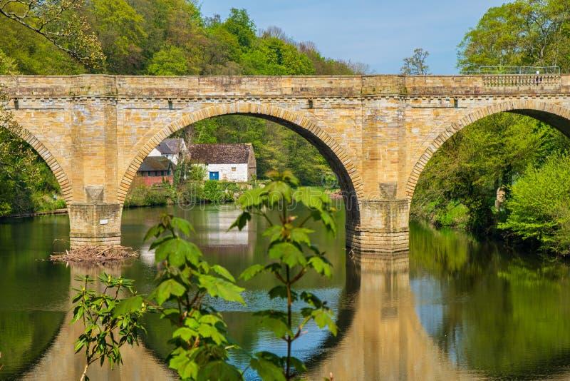Pfründe-Brücke, eine von drei Steinbogenbrücken, die Fluss-Abnutzung in Durham, England kreuzen stockbilder