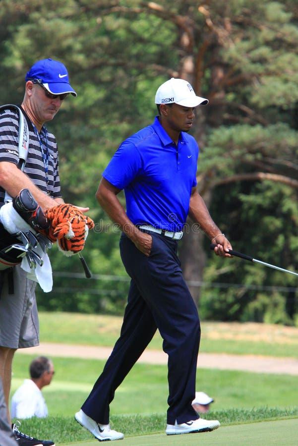 PGA golfisty tygrysa drewna zdjęcie stock