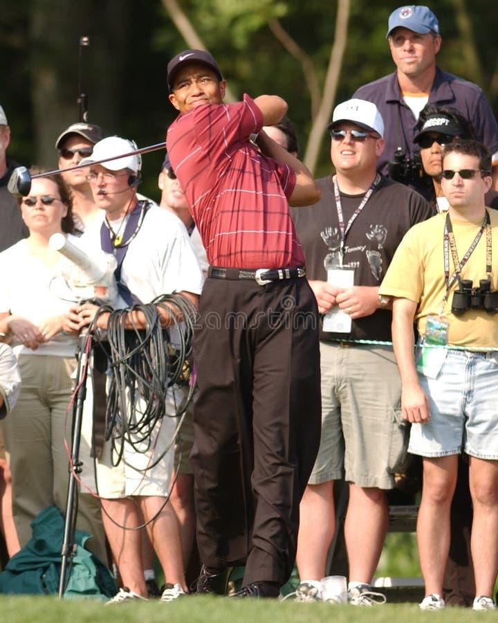PGA-golfvärldsstjärna Tiger Woods arkivbilder