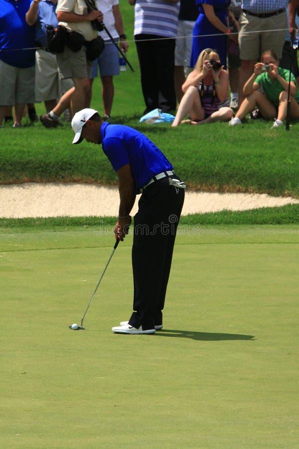 PGA Pro golfista Tiger Woods obraz stock