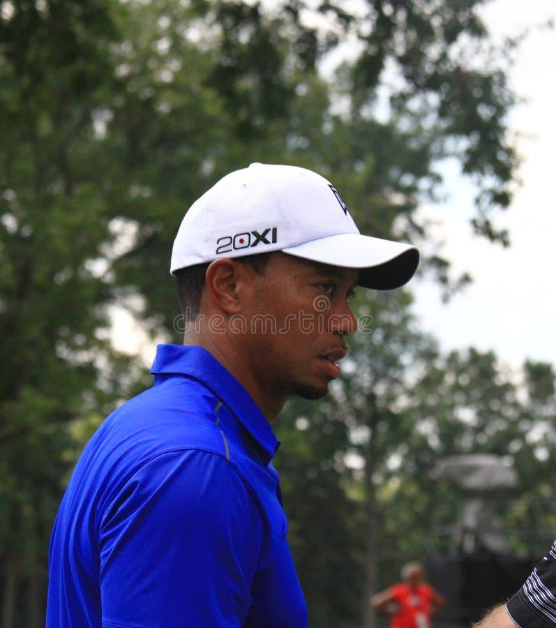 PGA Pro golfista Tiger Woods zdjęcia stock