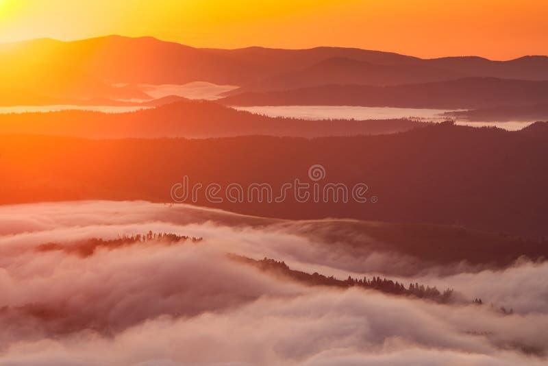 Phénomène de temps d'été Paysage saisonnier avec le brouillard de matin en vallée Les nuages ont trempé la vallée au-dessous du n photos stock