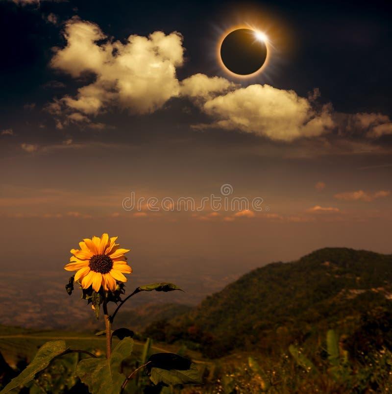 Phénomène naturel scientifique Éclipse solaire totale avec le diamant photographie stock libre de droits