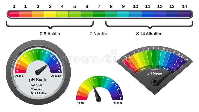 PH meter checking acidity level, vector illustration royalty free illustration