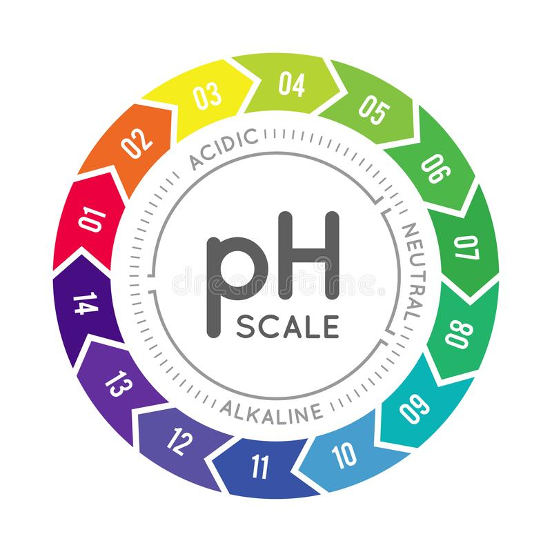 PH meter for measuring acid alkaline balance. Vector infographics in the circle form with pH scale stock illustration