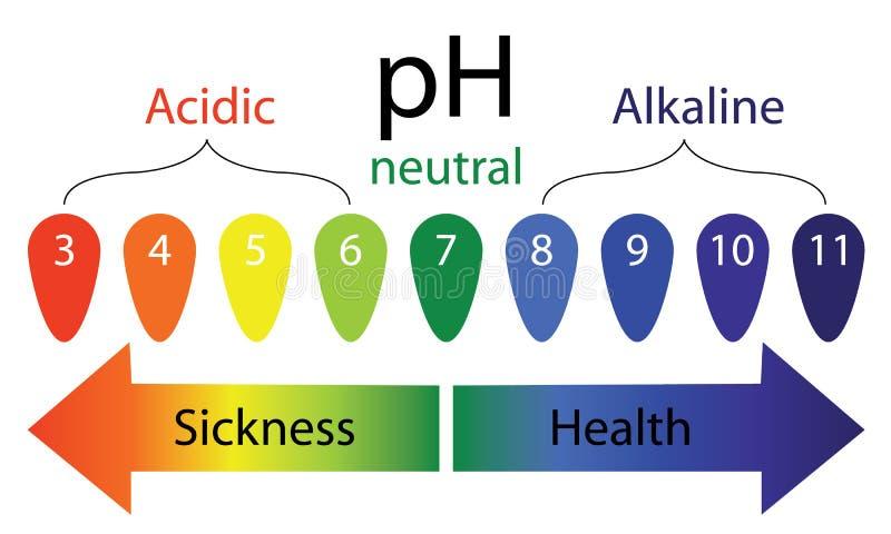 PH pozioma szalkowa pokazuje choroba i zdrowie w ciele ludzkim ilustracja wektor